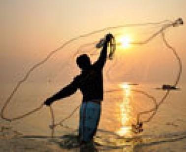 De pesca: una red de proteínas identifica nuevos objetivos terapéuticos en la enfermedad de Huntington