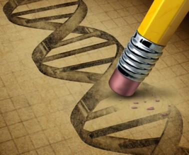 A step forward for gene editing: CRISPR-Cas9 and HD