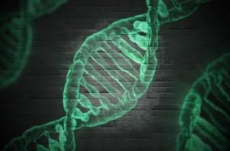La técnica CRISPR consigue revertir la enfermedad de Huntington